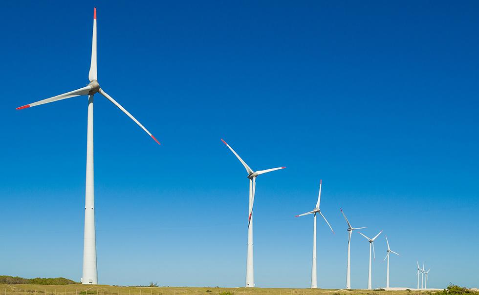Energia eólica ganha mais destaque no mercado brasileiro